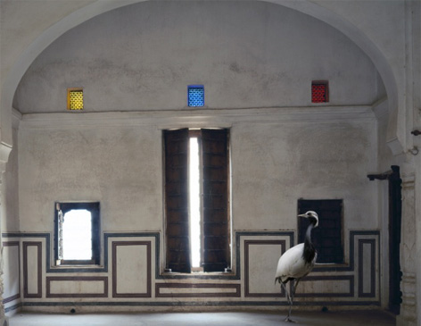 Karen Knorr's India Song