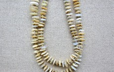 Vertebrae Necklace #1424